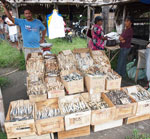 dried fish for sale in Malatapay